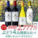 【送料無料】お手軽単一品種チリワイン飲み比べ4本セット チリワイン 赤ワイン 白ワイン 辛口 カワイイワイン