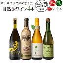 送料無料 北海道・沖縄・離島を除く オーガニックのお酒集めました シードルとワイン3本 バラエティ4本セット 辛口 シードル 白ワイン 赤ワイン スペイン フランス イタリア オーガニックワイン