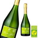 ロドリア キュヴェ・ブリュット スペイン産 辛口 泡 スペインワイン スパークリングワイン スパークリング 辛口 bio オーガニック 有機