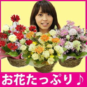送料無料/フラワーアレンジメント/2011 母の日/フラワーギフト/花/フラワー/誕生日/お祝い/開店...