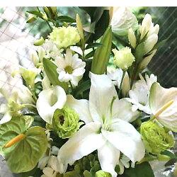 葬儀キリスト教・お供え花・枕花・一周期・お悔やみ・仏事