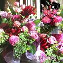 【花材】プリザーブドフラワー 大地農園アイスランドモス大袋 フレッシュグリーン