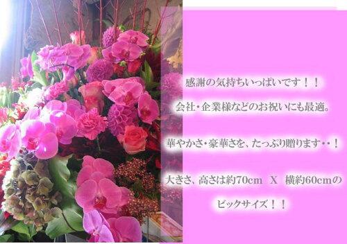 """生花アレンジメント """"ミラノ""""開院 店長オススメ!!【..."""