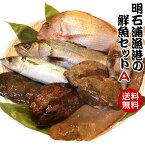 取れたて新鮮! 明石浦漁港の鮮魚セットA 安心・安全な明石浦の魚【鮮魚セットA】