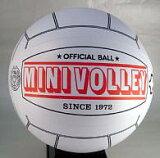 ミニバレー/ボール MINI-VB-10SET