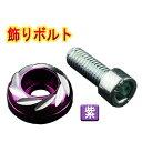 M6 飾りボルト 鍛造削り出しアルマイト加工 汎用 紫 「メール...