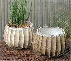 おしゃれ植木鉢鉢カバープランターカバーポット陶磁器アンティークナチュラル【お買得品】ストーンウェアポット(ホワイト/ブラウン)