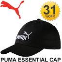 Puma052919_01