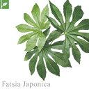 【壁面緑化】マグネット式壁面装飾 ぴたっとグリーン 人工植栽...