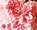 毎月届く花■花便り12か月コース■一年間毎月花を贈る 毎月記念日に花束 母の日5月はカーネーションの花束 フラワーサブスクリプション【生花・送料無料】和の花