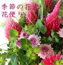 花の定期便 毎月届く花■花便り3か月コース■3か月間毎月花を