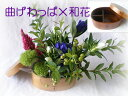曲げわっぱお弁当箱にリンドウの花■竜胆のフラワーギフト 父の...