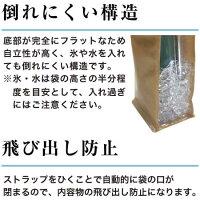 アイスクーラーバッグ説明3