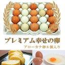 《プレミアム市場》【送料無料】島根県 生卵 しまづの「こだわり」卵セット(赤卵32個アローカナの卵8個入り) 贈答用 / 濃厚 高級たま..