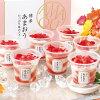 【送料無料】博多あまおうたっぷり苺のアイス(A-ATR)【代引き不可】【離島不可】