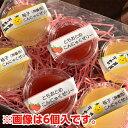 【送料無料】那珂川町名産品 フルーツこんにゃくゼリー詰合せセ...