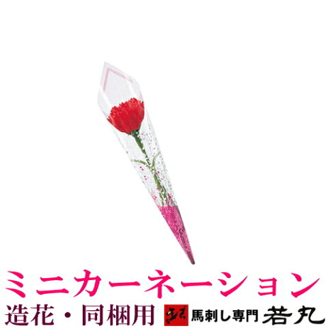 ミニカーネーション造花 母の日ギフト【馬刺し専門 若丸専用】 購入商品と同梱して下さい。母の日のギフトに zz