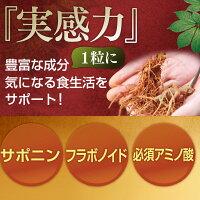 田七人参に注目の栄養成分はサポニン・フラボノイド・必須アミノ酸