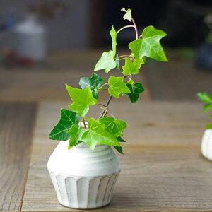 そろばん型 一輪挿し 益子焼 陶器製 花器 花瓶 おしゃれ わかさま陶芸 母の日 ギフト プレゼントお家カフェ