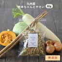九州産 乾燥野菜5種ミックス 80g(キャベツ、かぼちゃ、ごぼう、玉ねぎ、大根) 完全無添加 簡単ちゃんと...