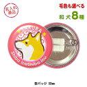 Au Webポータル 楽天市場で 秋田犬 を検索 5