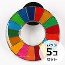 国連本部限定販売 SDGs ピンバッジ 日本未発売 UNDP (丸みタイプ5個)