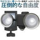 【53%引き】センサーライト ムサシ RITEX 1.3W×...