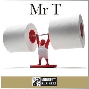 ( あす楽 ) トイレットペーパー 収納 ホルダー ミスター T 【 MONKEY BUSIN…