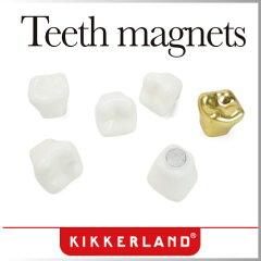 ( あす楽 ) マグネット 磁石 セット おもしろ文具 歯 歯医者 金歯 ティース マグネット…
