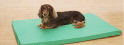 床ずれ防止・防水マットレス[グリーン]M/L犬いぬイヌ老犬介護用品寝たきり中型小型介護用ベッドマットクッションプードルパグコリーコーギーシバ犬用介護