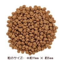 1粒のサイズ:Ψ約11mm×約5mm
