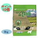 Add_lamb_9k_p10