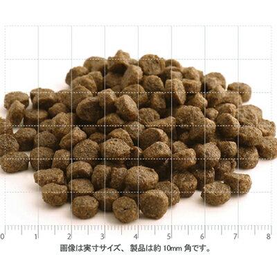 【対応】Newフィッシュ4ドッグ(ファイネスト)サーモン(小粒)6kg【選べるプレゼント付】