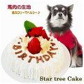 【犬用】可愛いペットの誕生日に!無添加で安心なペット用ケーキを教えて。