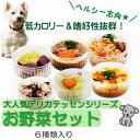 国産 焼かつお ひとくちカット 60g 無添加無着色レトルト 犬猫用 Packun Specialite 関東当日便