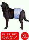 吸収パッド付きマナーベルト(男の子用失禁パンツ) XL(胴周り72〜87cm)【犬用介護用品】【おむつ】 老犬 高齢犬 わんケア マナーバンド…