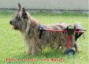 40000台以上の実績。老犬のリハビリや足腰の弱った犬にぴったりの犬用車椅子。K-9カスタム車椅...