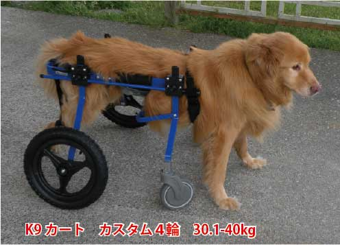 K-9カート『Full Support Dog Wheelchair』