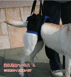 歩行補助ハーネス(後足用) L (胴周り63-73cm) 介護用【ウォークアバウト】 ペット 介護 用品【送料無料】 老犬 高齢犬 わんケア 【大型犬用介護用品】ペットグッズ 後肢 後脚 歩行 補助 ハーネス 犬 歩行補助