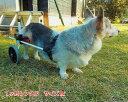 【1ヶ月レンタル】犬の車椅子 K9カートスタンダード後脚サポート M(11.1〜18kg)用 介護用品 老犬 高齢犬 わんケア 犬用 車椅子 車い…