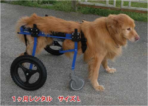 【1カ月レンタル延長】4輪の犬の車椅子 K9カートスタンダード L(18〜30kg)用 ラブラドール シェパード バーニーズ【介護用品】 わんケア 犬用 車椅子 車いす カート【大型犬用車椅子】 バギー 後肢 後足 歩行器  犬  レンタル 歩行 補助 ペット