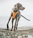 【New Model】【送料300円】アドベンチャーハーネス 60〜100サイズ 犬用 大型犬 超大型犬 胴輪 【 Hurtta フルッタ ☆】 Y型 クッションハーネス 北欧 フィンランド 犬用ハーネス 大型犬用 ハーネス