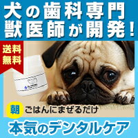 Dr.YUJIROハタ乳酸菌デンタルパウダー(通常購入)