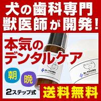 Dr.YUJIROフィトンチッドデンタルジェル/ハタ乳酸菌デンタルパウダーセット(通常購入)