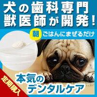 Dr.YUJIROハタ乳酸菌デンタルパウダー定期購入