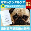 わんこの歯医者さん開発! Dr.YUJIRO (朝用パウダー)(※約3カ月分) 3000頭以上の犬の歯石除去(歯石取り)を行ってきた獣医師が開発。