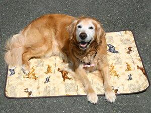 ♪屋外・屋内で重宝するミニサイズの防水シート♪表はペットに優しいさらさら綿100%、でも裏に...
