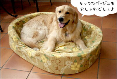 大型犬のワンちゃん用セット大型犬用ベッドオーソペディックカドラー中身&カバーセット(XLサイ...