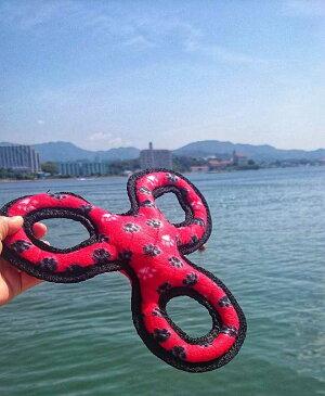 スリーリング(レッド)水に浮く頑丈なタフィーTuffy 丈夫 大型犬 中型犬用の最強おもちゃ