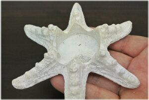 白いヒトデ型のキャンドルホルダー